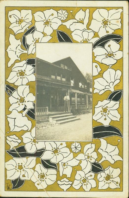 White Pines Postcard